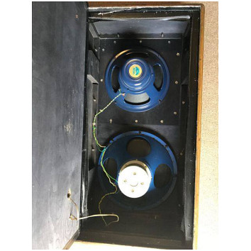 T60 speaker cabinet and AC50